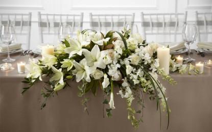 КРИН: Најомилено цвеќе за во вазна
