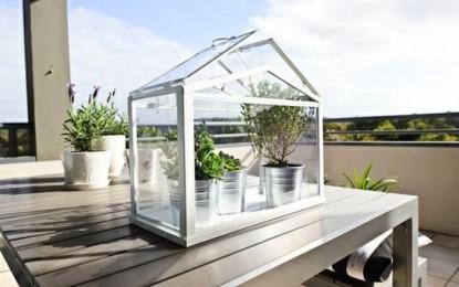ИКЕА мини стаклени градини