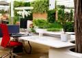 Идеи за растенија во канцеларија ?
