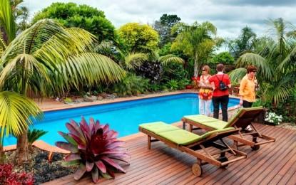 Уредување на дворот во тропски стил