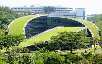 Уметничка школа со зелен покрив за поголема креативност