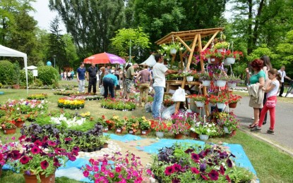 Заврши вториот по ред Скопски цветен фестивал 2015