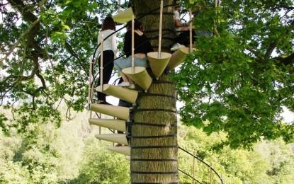Скали за дрво со врвен дизајн (ФОТО)