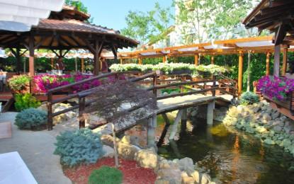 Магичната градина на ресторанот Бакал