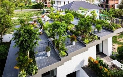 Кровна зелена градина во куќа во Виетнам
