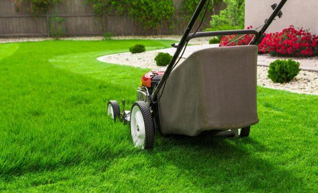 Како правилно да го косиме тревникот?