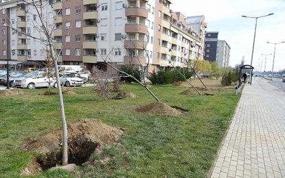 Град Скопје започна есенска акција за садење на дрвја