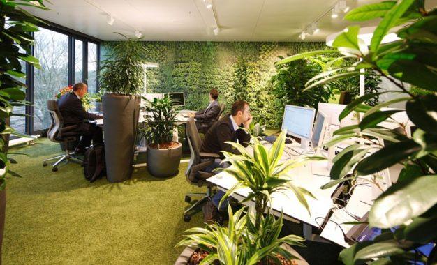 Романија воведува зелени градини на новите деловни згради