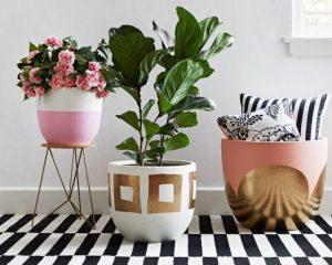 Декоративни цвеќиња за ентериери