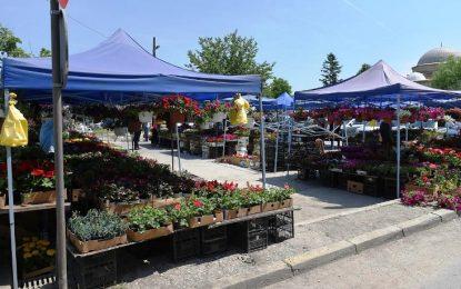 Отворен нов цветен пазар во Скопје