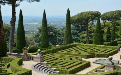 Како се одржуваат медитерански градини?