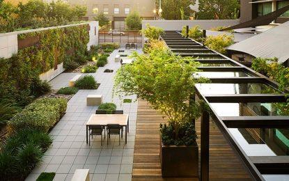 Дали да се биде пејзажен архитект или пејзажен дизајнер? (втор дел)