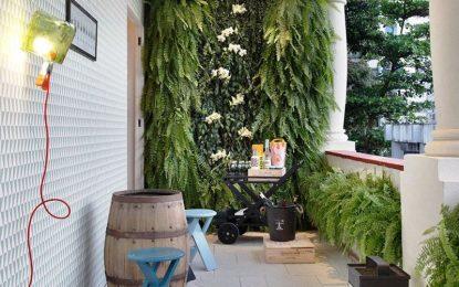 Лесен начин да си направете вертикална градина