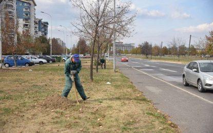 Почна големата есенска акција за зазеленување на Скопје